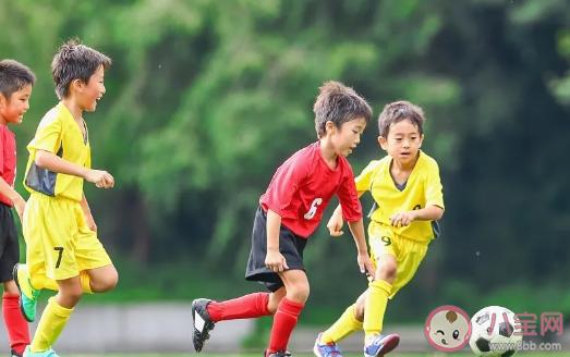 怎么让孩子身体更壮实 可以做哪些户外运动
