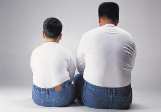 父母肥胖子女肥胖概率大吗 父母肥胖对子女有影响吗