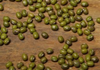 尿酸偏高的女性可以吃绿豆吗 绿豆的嘌呤含量高不高