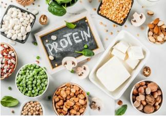 哪些食物蛋白质含量高 含蛋白质高的几种食物