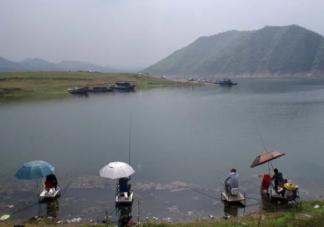 抖音钓鱼是什么意思 钓鱼梗的出处是什么