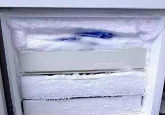 冰箱怎么快速除霜 冰箱结冰怎么办