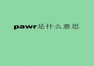 pawr是什么意思什么梗 pawr都给你有什么含义出处是什么