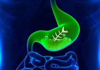 吃大蒜/用牙膏能杀死幽门螺杆菌吗 益生菌可以消灭幽门螺杆菌吗