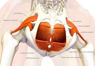 顺产和剖腹产哪个更伤盆底肌 盆底损伤对女性健康有哪些伤害