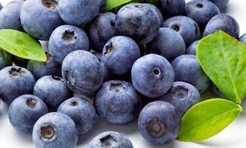 20种最适合刷脂的健康冷门食物 吃什么刷脂快减肥