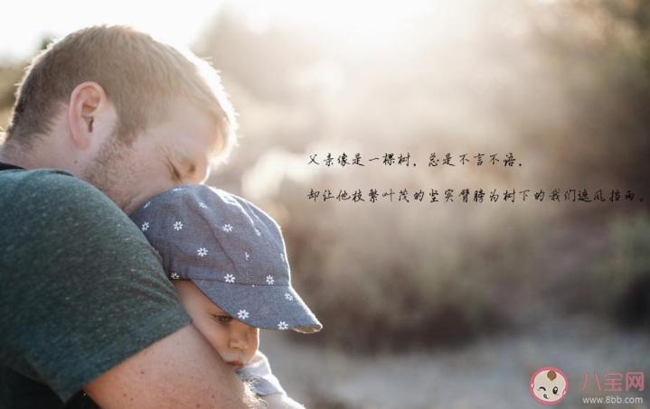 2020父亲节遇上夏至的心情句子 父亲节是夏至日的心情说说