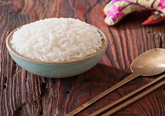 一岁宝宝能不能吃米饭 过早给宝宝吃米饭有什么危害