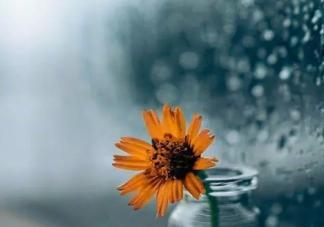 2020一直下雨的朋友圈感言句子 表达一直下雨心情烦躁说说