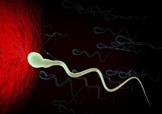什么样的夫妻适合人工授精 人工授精的孩子正常吗