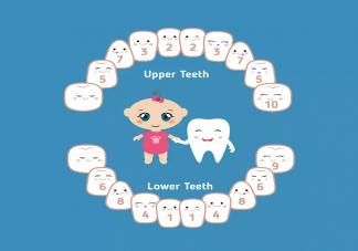 宝宝什么时候长第一颗牙 宝宝长第一颗牙齿的时间
