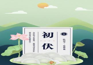 头伏为什么要吃饺子 头伏吃饺子有什么说法寓意