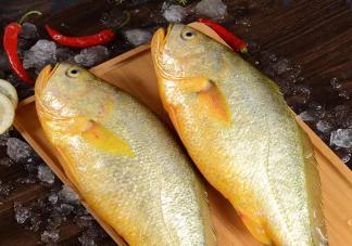 哪些鱼类适合给宝宝做辅食 适合给宝宝吃的鱼