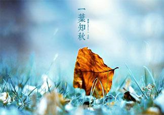 二十四节气立秋到了发朋友圈的祝福语说说 二十四节气立秋的经典祝福语文案大全
