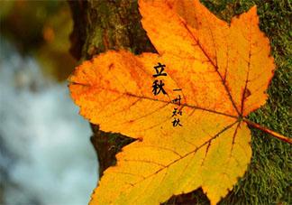 关于立秋的谚语顺口溜有哪些 立秋节气有趣的谚语顺口溜大全