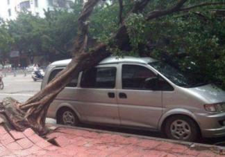台风天气外面车停在哪里比较好 台风来了车怎么停安全
