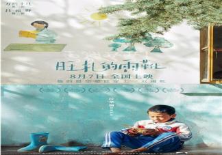 《旺扎的雨靴》是根据什么小说改编的 讲述了什么样的故事