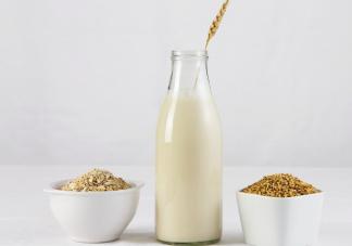 燕麦奶和牛奶哪个更好 燕麦奶和牛奶有什么不同