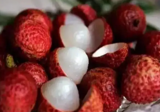 那种水果吃了能查出酒驾 蚂蚁庄园8月28日答案