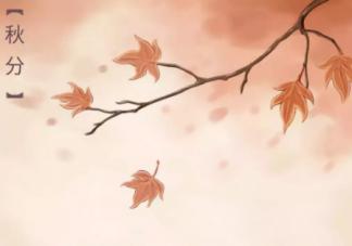 2020秋分节气早上好带图心情句子 秋分时节温馨正能量问候语