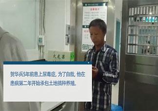 尿毒症男子包下60亩地自救是什么情况 尿毒症能治好吗