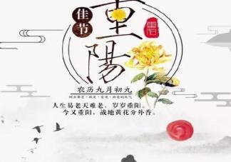 九月九重阳节登高心情说说 重阳节去爬山文案句子