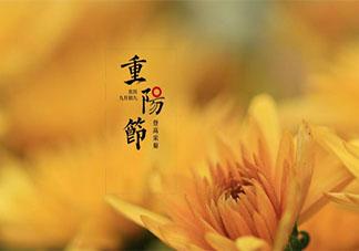 2020重阳节的祝福语简单句子带图 2020重阳节的简单祝福语图片说说