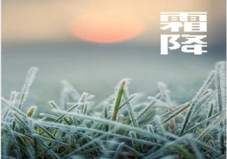 霜降来了注意保暖的说说句子大全 霜降来了注意保暖的朋友圈说说