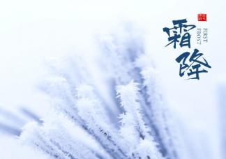 今日霜降注意保暖的暖心话语 霜降注意保暖的朋友圈说说