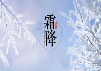 今日霜降早安问候语一句话大全 霜降早安朋友圈温暖祝福语录