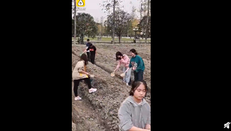 种田纳入必修课是怎么回事 学生学习种田有必要吗