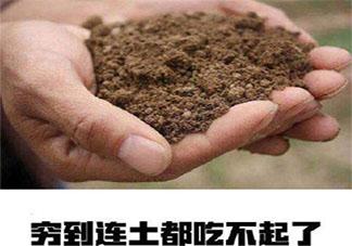 双十一过后吃土的心情文案说说 双十一后准备吃土了的感想朋友圈