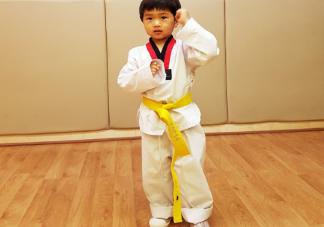 儿子跆拳道晋级发朋友圈说说 儿子跆拳道晋级心情感言句子