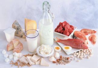 蛋白质摄入过多有什么危害 蛋白质饮食指南