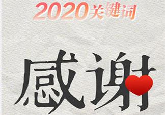 关于2020年的感受总结作文大全 2020我的感受总结作文美篇