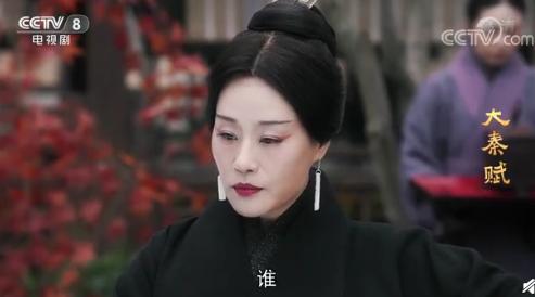 大秦赋华阳夫人结局是什么 华阳夫人最后成太后了吗