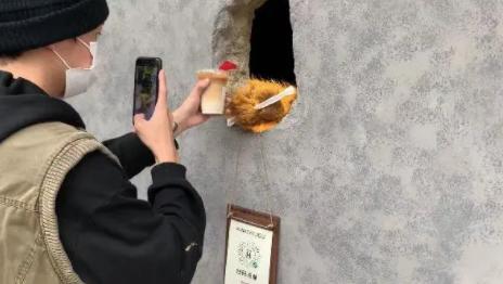 上海熊掌咖啡店怎么火的 递咖啡的熊掌干净吗