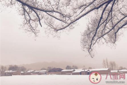 為什么積雪融化時會更冷 最新螞蟻莊園12月7日答案