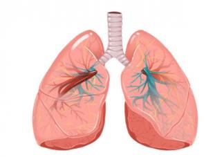 肺结核体检结果将纳入学生健康档案 为什么要纳入学生健康档案