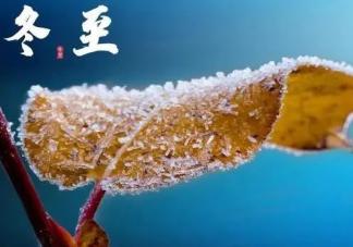 冬至吃饺子的寓意和祝福语大全 冬至吃饺子的图片和祝福语
