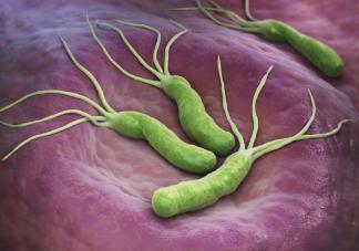 我国超一半人感染幽门螺杆菌是真的吗 幽门螺杆菌查出阳性要根除吗