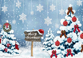 关于圣诞节温馨的句子说说 圣诞节温馨文案发朋友圈美句