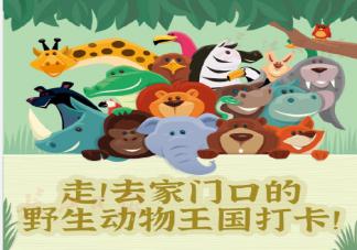 武汉野生动物王国什么时候开园 武汉野生动物王国有哪些好玩的
