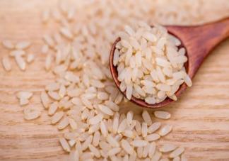 胚芽米是智商税吗 宝宝吃普通大米还是胚芽米好