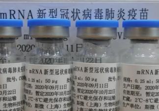 辉瑞疫苗是美国的还是德国的 灭活疫苗与mRNA疫苗有什么区别