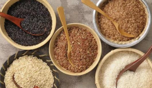 米饭面条馒头等主食的营养物质是什么 蚂蚁庄园1月14日答案