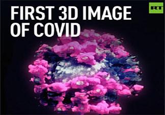 新冠病毒的首个3D图像是怎样的 新冠病毒究竟长什么样子