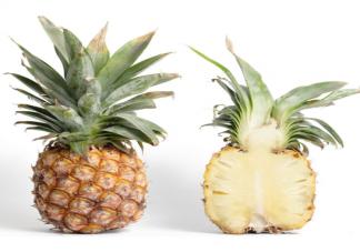 凤梨和菠萝是不是同一种水果有什么区别 凤梨和菠萝有什么关系