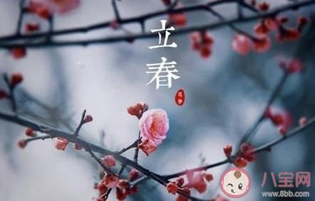 春雨惊春清谷天第一个春指什么节气 第二个春指什么节气
