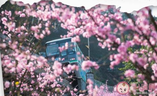 重庆开往春天的轻轨在哪 佛图关站最佳拍摄路线图